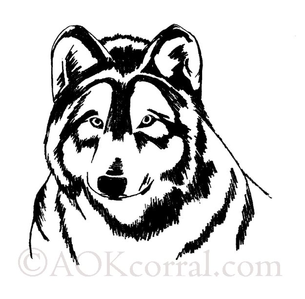 Wolf patterns woodburning painting crafts medium spiritdancerdesigns